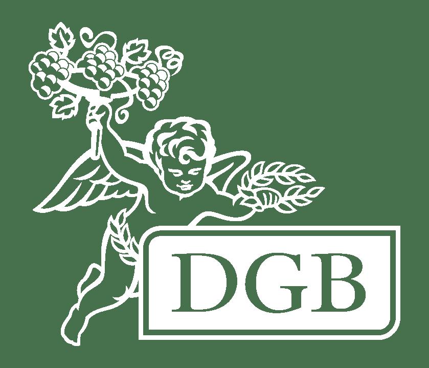 DGB (Pty) Ltd